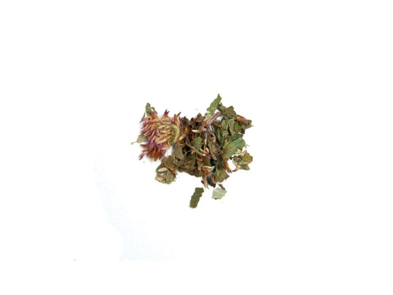 detox herbs